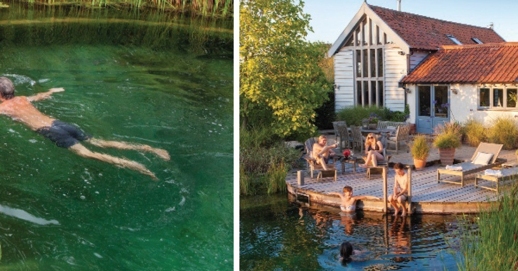 Why are people switching to swimming ponds over the garden for Swimming pools that look like ponds