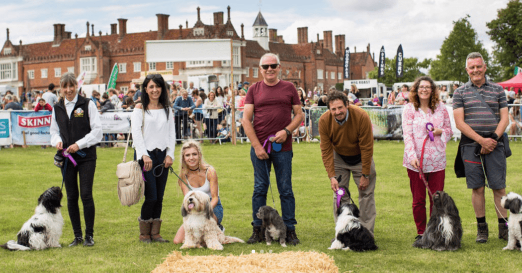 SUFFOLK DOG DAY 2019!