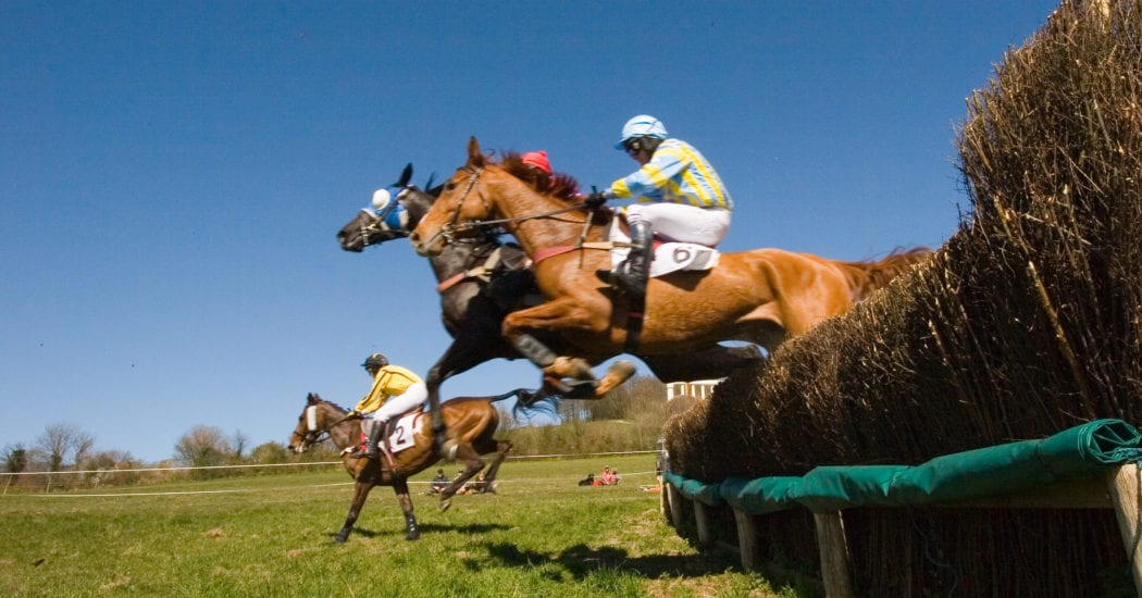 David Burr to once again sponsor point-to-point racing at Horseheath, Cambridgeshire