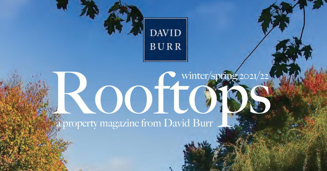 Rooftops Magazine Winter 2021 / Spring 2022 Edition